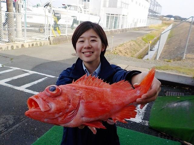 http://www.suzukimarine.co.jp/marina/hamanako/blog/2018/04/01/img/DSCN9041.jpg