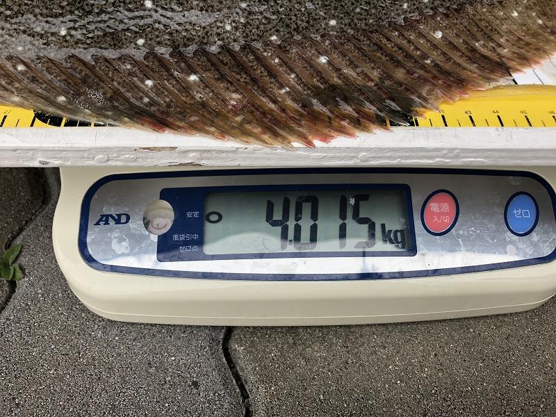 https://www.suzukimarine.co.jp/marina/hamanako/blog/img/%E5%86%99%E7%9C%9F%202019-02-09%209%2049%2023.jpg