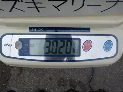 DSCN9432.JPG