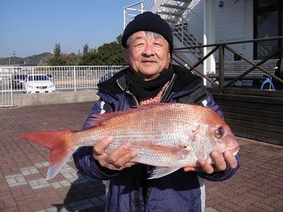 伊良湖釣り