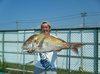 巨大鯛が釣れました!