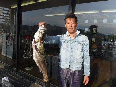 三河湾 釣り シーバス