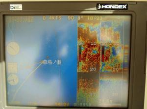 DSC00418.JPGのサムネイル画像