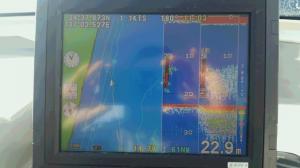 12月の魚探のサムネイル画像